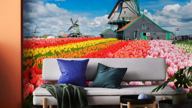 ขายวอลเปเปอร์สวยราคาถูก ติดห้องนั่งเล่น ประเทศฮอลแลนด์
