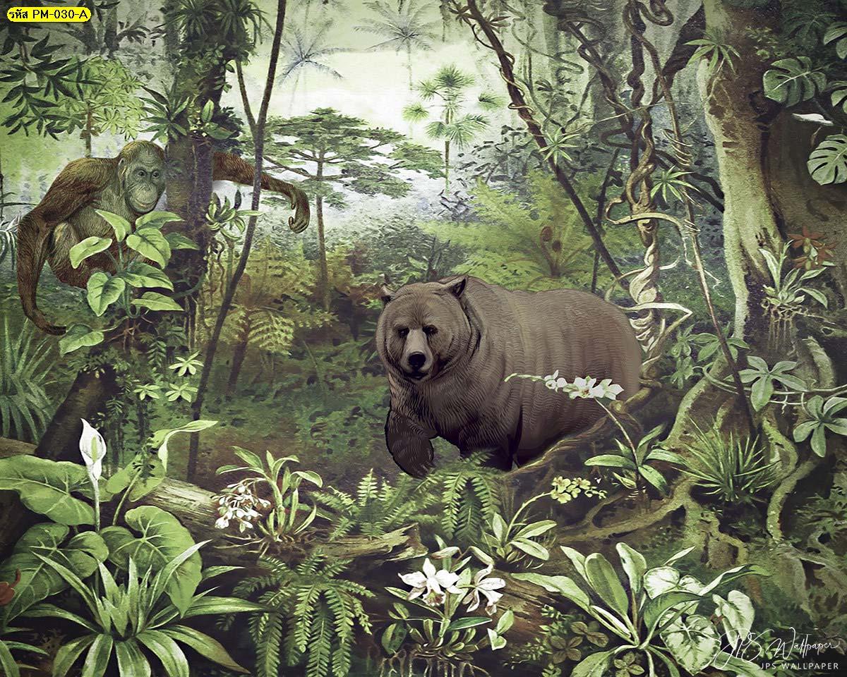 วอลเปเปอร์ลายหมี Wallpaperธรรมชาติสีเขียว วอลเปเปอร์ธรรมชาติ