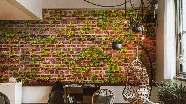 Wallpaper สั่งทำราคาถูก ติดห้องนั่งเล่น ลายไม้เลื้อยบนอิฐแดง