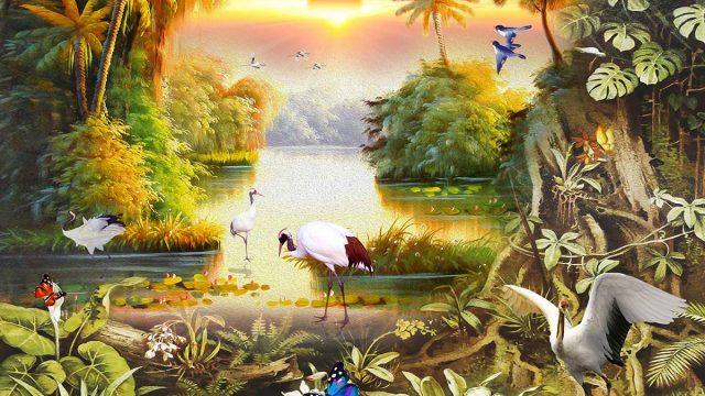 วอลเปเปอร์ติดผนังสีเข้ม วอลเปเปอร์ภาพนก วอลเปเปอร์ออฟฟิศ